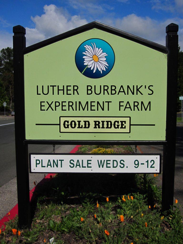 Luther Burbank's Experiment Farm - Gold Ridge