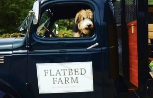 Flatbed Farm