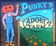 Punky's Adobe Farm