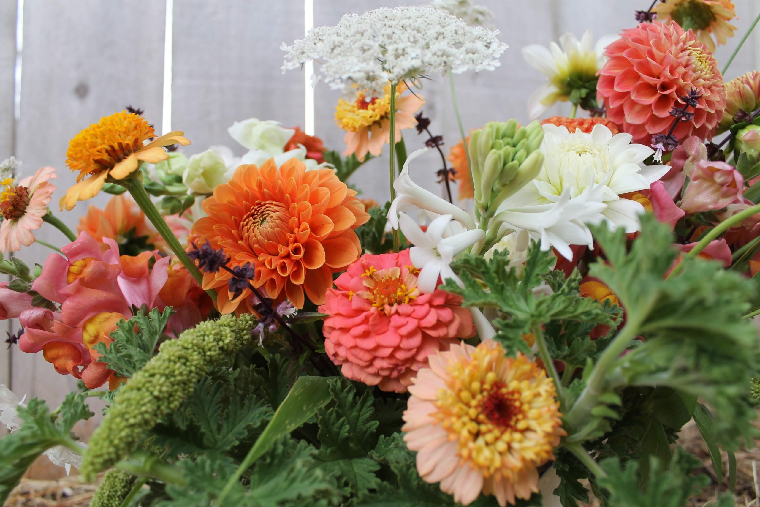 JOLEE/'S SPRING FLOWERS NEW