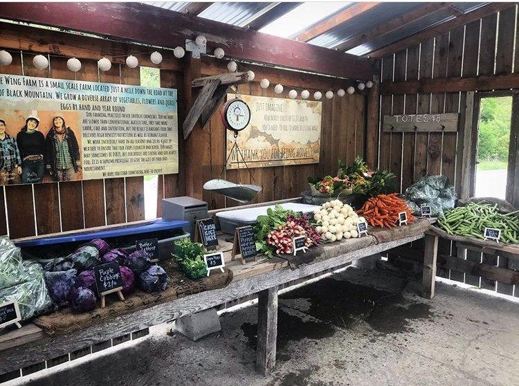 Little Wing Farm Sonoma County Farm Trails