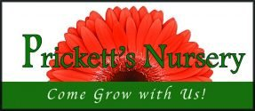 pricketts nursery