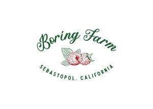 BoringFarm_Final_Social